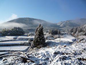 田村ファーム&フォレスト 冬の田圃