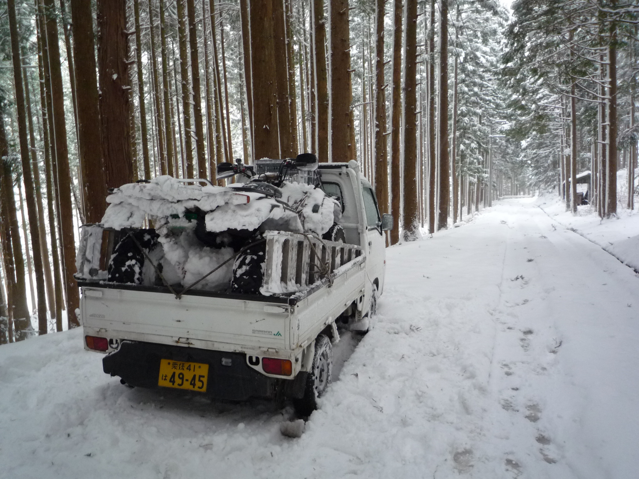田村ファーム&フォレスト 林業